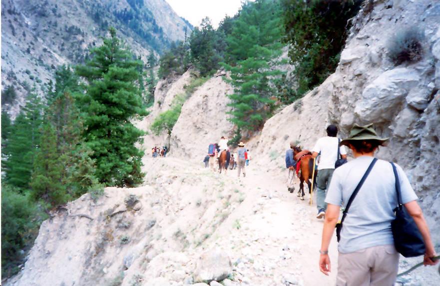 Treking from tato to fairy meadows Pakistan